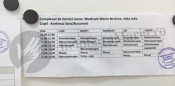 calendar terapie sara